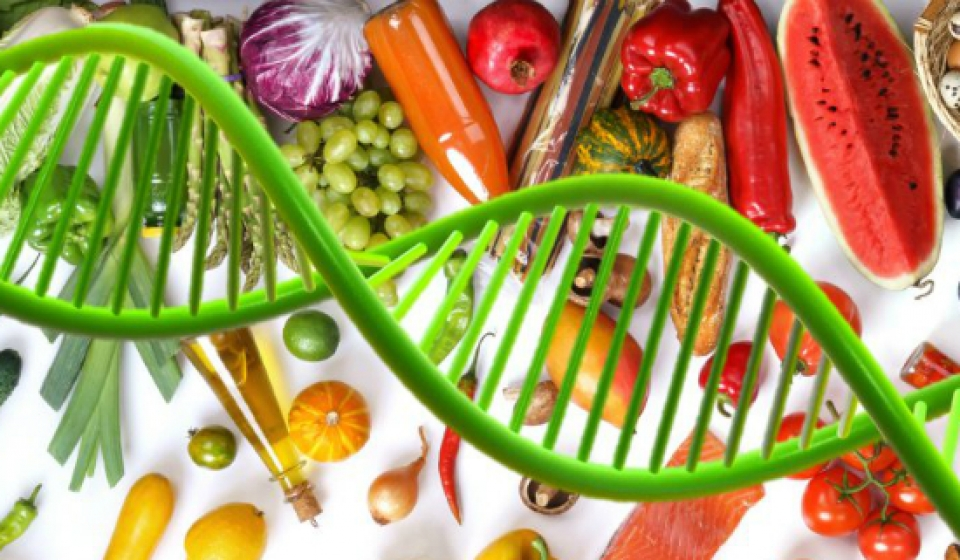 Nutrigenetica_e_Nutrigenomica1